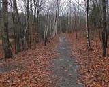 Trail Along Kenduskeag b 12-6-17.jpg