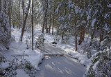 Stream DeMeritt Forest 12-16-17.jpg