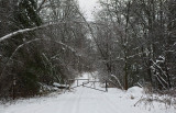Trail Along Kenduskeg 12-13-17 .jpg