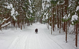 Kelley - Glenburn  Trails c  1-8-18.jpg