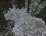 Ice-Northeast Penjajawoc Preserve 12-20-10-ed.jpg