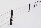 Fence - Paul Bunyan Trails 3-21-15-ED.jpg