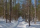Side Trail Dover-Foxcroft  c 2-17-17-ed.jpg