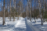 Side Trail Dover-Foxcroft b 2-17-17-ed.jpg