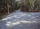 Carriage Roads Long Pond Area 2-15-18.jpg