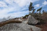 Tunk Mtn. Trail c 4-8-13-ed.jpg