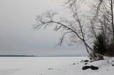 Sebasticook Lake 1-7-15-ed.jpg