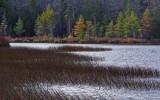 Ducktail Pond 10-24-13-ed.jpg