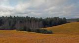 Field  Hills to Sea Trail 12-11-15-ed.jpg