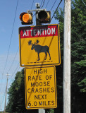 moose sign 8-28-09.jpg
