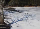Little Long Pond  b 3-13-17-ed.JPG