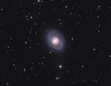 NGC 1398 in Fornax