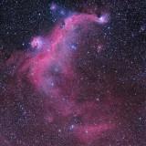 IC2177 The Seagull Nebula