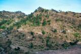 Jhandi Chontra Village