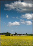 Scania farm near Svedala