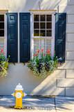Windows, flowers, hydrant