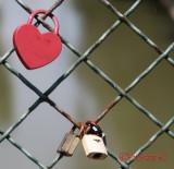 Love locks - Timisoara - Romania
