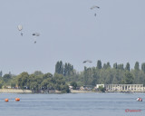 aeronauticshow-lacul-morii-bucuresti_44.JPG