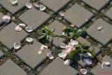 parcul-rozelor-trandafiri-timisoara_47.JPG
