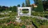 parcul-rozelor-trandafiri-timisoara_02.jpg