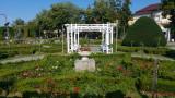 parcul-rozelor-trandafiri-timisoara_08.jpg