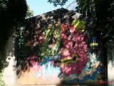 graffiti-timisoara-romania_23.JPG