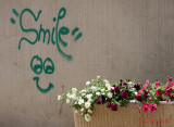 graffiti-timisoara-romania_41.JPG