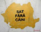 graffiti-timisoara-romania_49.JPG