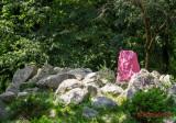 graffiti-timisoara-parcul-botanic.jpg