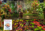 Philadelphia Flower Show 2018 Wonders of Water