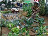 Conserving Water and Growing Food