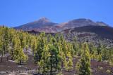 View towards El Teide, Montana Samara