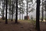 Forest hut, El Pilar