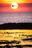Doonbeg Sunset