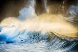 Wild Atlantic Coast