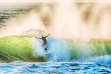Wild Atlantic Surfer