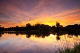 Dawn Reflections