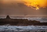 Winter Sunset - Crab Island