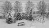 snow_dec_2017