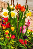 flowers_entrance
