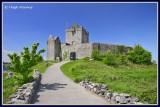 Ireland - Co Galway - Kinvara - Dúnguaire Castle.