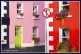 Ireland - Co.Louth - Cooley Peninsula - Carlingford.