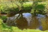 Ireland - Co.Cavan - Shannon Pot - Source of the River Shannon.