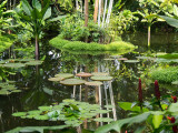 Botanical  Park in Singapore