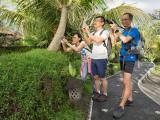 New photo generation in Bali