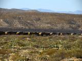 Hundreds of locomotives are sitting idle in Southern Arizona