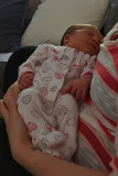 Asleep In Mom's Arms