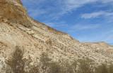 Avdat National Park