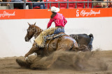 Working Cow Horse Classic