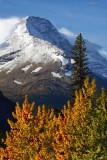 Glacier NP, MONTANA /  Fall 2018
